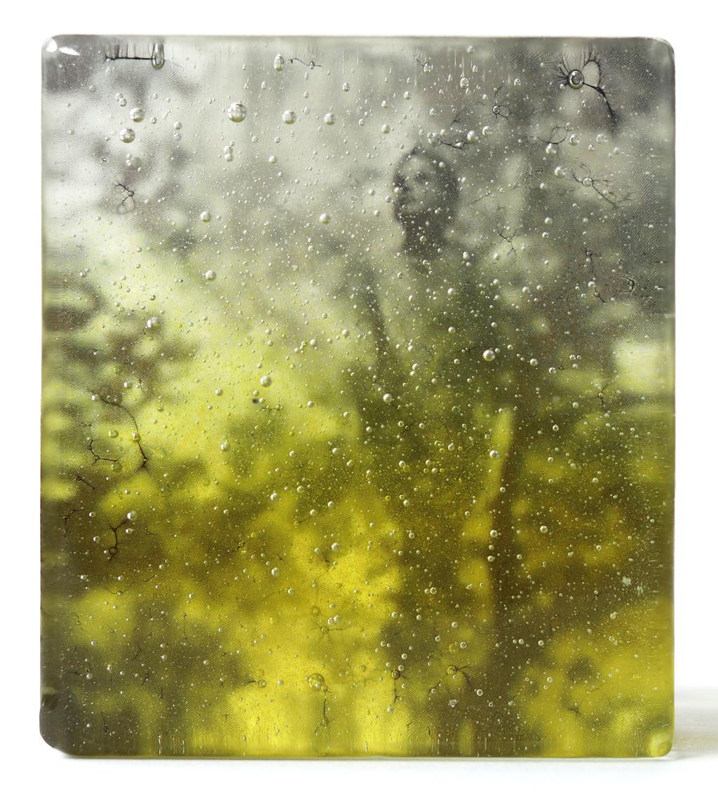"""Marieke PETERS – """"Inner nature"""" – fused glas – 500 €"""